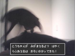 080304_01.jpg