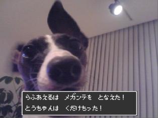 080304_04.jpg